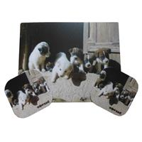 Puppy Place Mat and Coasters