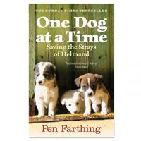 One Dog at a Time - P Farthing (Paperback)