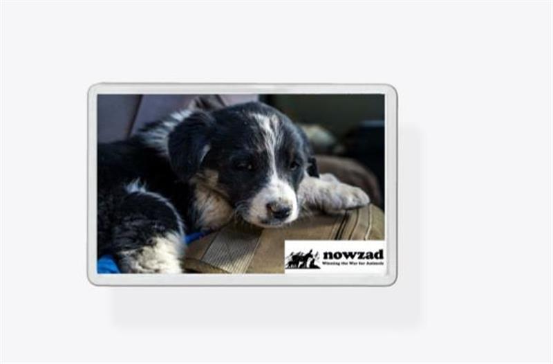 Nowzad Rescue 'Zero' Fridge Magnet