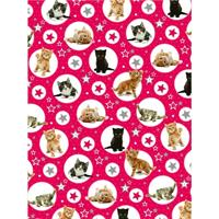 Twinkle Kittens Christmas Wrap and Tags
