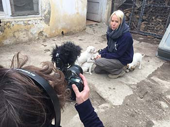Nowzad on Animal Planet's Dodo Heroes series