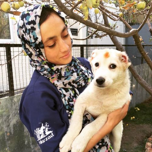 Meet Nowzad's newest Veterinarians – Dr Hamida and Dr Farzad!