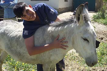 The FIRST EVER donkey sanctuary in Afghanistan