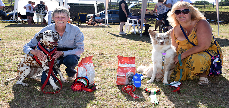THE Nowzad Dog Show is BACK!