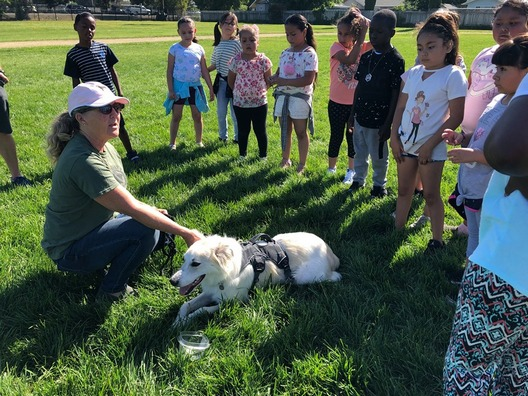 Children in Fairfield, CA raise vital funds for Nowzad with their Pennies for Pups event
