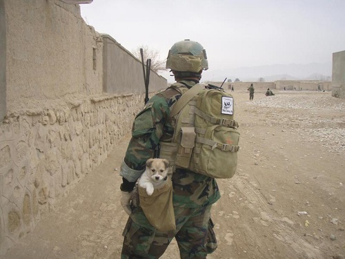 Soldier rescues